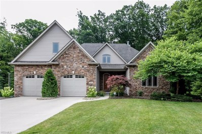 353 Copper Creek Drive, Amherst, OH 44001 - #: 4117166