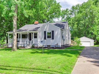 178 Wolf Avenue, Wadsworth, OH 44281 - #: 4117631
