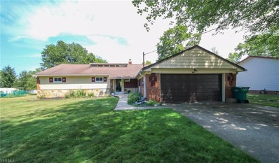 485 Snavely Road, Richmond Heights, OH 44143 - #: 4117884