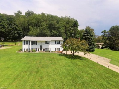 702 Perry Drive NW, Canton, OH 44708 - #: 4117885