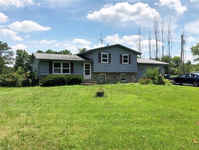 3780 McClintocksburg Road, Diamond, OH 44412 - #: 4117918