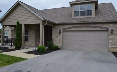 3834 Coventry Lane, Huron, OH 44839 - #: 4117975