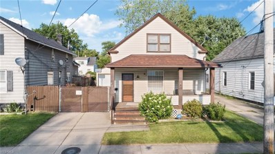 4103 E 56th Street, Cleveland, OH 44105 - #: 4117998