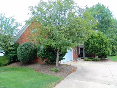 583 Daleview Drive, Aurora, OH 44202 - #: 4118031