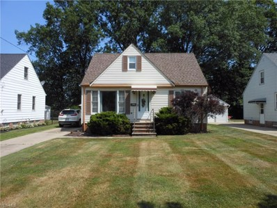 30021 Dorothy Drive, Wickliffe, OH 44092 - #: 4118044
