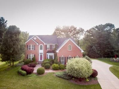 10860 Silver Tree Trail, North Royalton, OH 44133 - #: 4118119