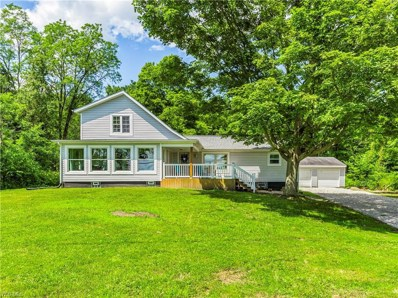 523 Stroup Road, Atwater, OH 44201 - #: 4118268