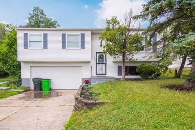 25829 Buckthorn Road, Bedford Heights, OH 44146 - #: 4118337