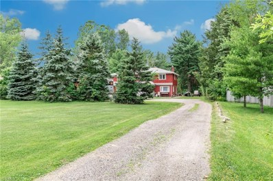 9350 Chillicothe Road, Kirtland, OH 44094 - #: 4118580