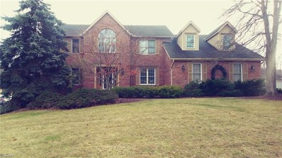 4804 Chestnut Oval, Independence, OH 44131 - #: 4118988