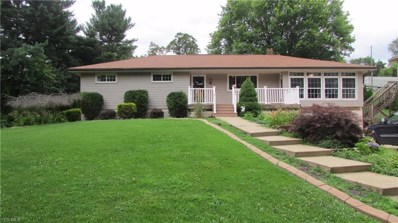 258 Duncan Avenue, East Liverpool, OH 43920 - #: 4118991