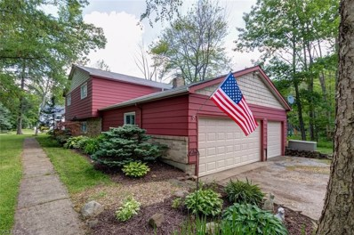 11463 Willow Hill Drive, Chesterland, OH 44026 - #: 4118996