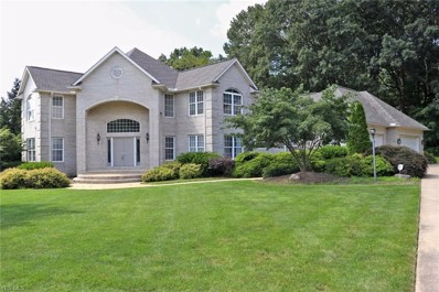 934 Meadow Lane, Wooster, OH 44691 - #: 4119172