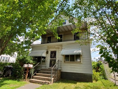 4111 E 64th Street, Cleveland, OH 44105 - #: 4119434