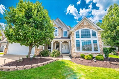 7474 Jumpers Crossing Lane, Concord, OH 44077 - #: 4119602