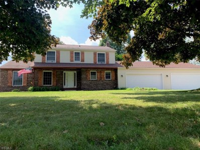 7 Appaloosa Trail, Madison, OH 44057 - #: 4119729
