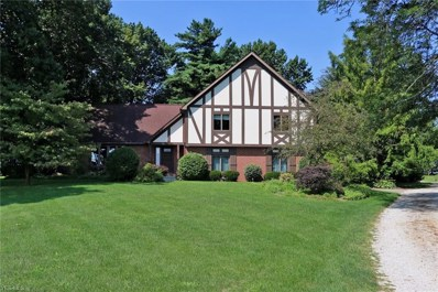 4056 Eby Road, Smithville, OH 44677 - #: 4120626