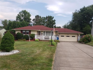 3835 Dunbar Street, Youngstown, OH 44515 - #: 4120941