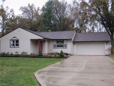 5559 Red Apple Drive, Austintown, OH 44515 - #: 4121184