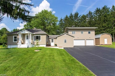 6595 Grove Road, New Franklin, OH 44216 - #: 4121271