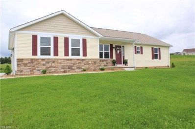 919 Cabot Drive, Canal Fulton, OH 44614 - #: 4121297