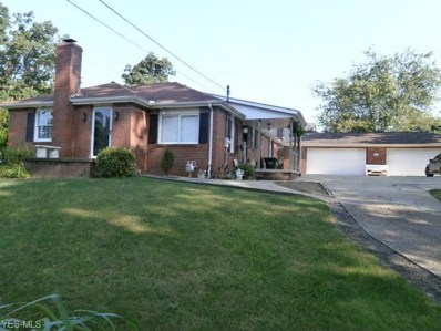 46458 Y And O Rd Road, East Liverpool, OH 43920 - #: 4121399