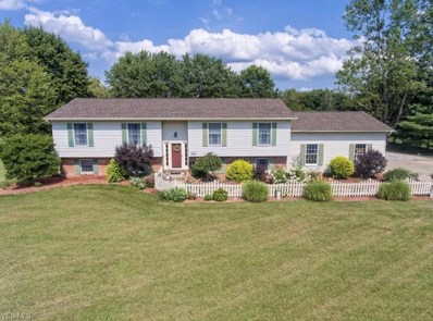 7345 Meadow View Drive, Seville, OH 44273 - #: 4121666