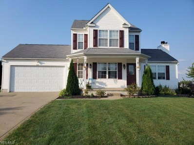 846 Longbrook Drive, Wadsworth, OH 44281 - #: 4121750