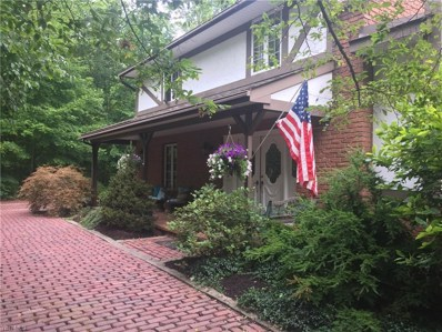 6460 Leffingwell Road, Canfield, OH 44406 - #: 4122281
