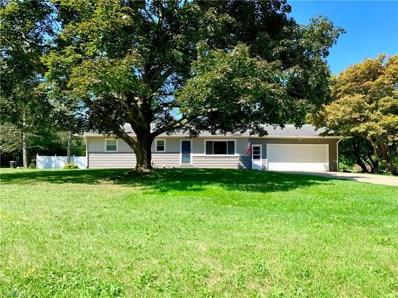 11255 Eleanor Avenue NE, Hartville, OH 44632 - #: 4122580