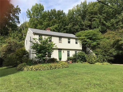 11875 Plum Ridge Street, Hiram, OH 44234 - #: 4122748
