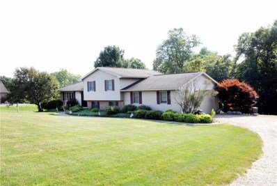 1235 Maplebrook Road, New Concord, OH 43762 - #: 4122871