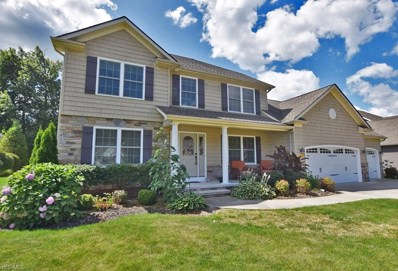 12368 Summerwood Drive, Concord, OH 44077 - #: 4123611