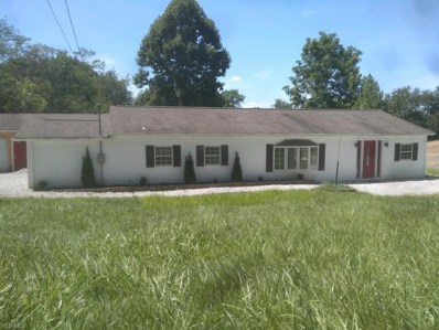 49144 N Market Extension, St. Clairsville, OH 43950 - #: 4123934