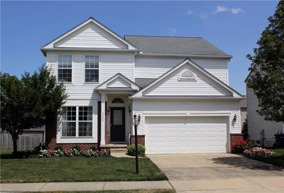 9564 Taberna Lane, Olmsted Township, OH 44138 - #: 4123941