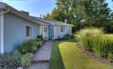 1614 Iris Glen Drive, Twinsburg, OH 44087 - #: 4124099