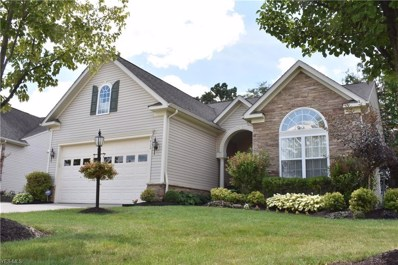 5422 Indian Wells Drive, Medina, OH 44256 - #: 4124114