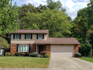 7623 White Pine Court, Mentor, OH 44060 - #: 4124188