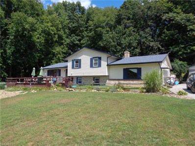 5251 Wheathill Road, East Palestine, OH 44413 - #: 4124312