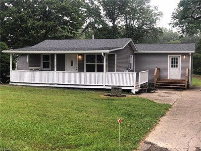 1130 State Route 183, Atwater, OH 44201 - #: 4124345