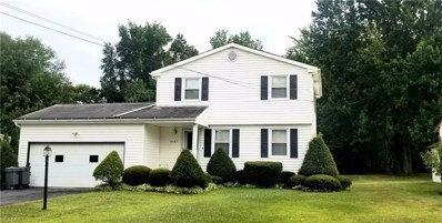 4347 Timberbrook Drive, Canfield, OH 44406 - #: 4124393