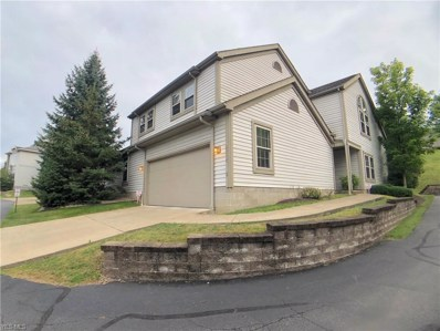6515 Saint Andrews Drive UNIT 2, Canfield, OH 44406 - #: 4124749