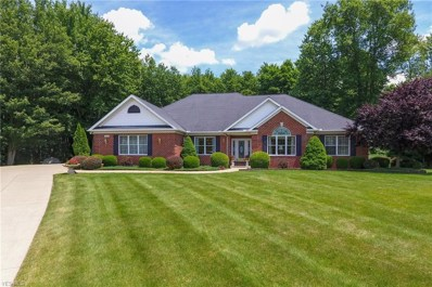 357 Waterford Way, Wellington, OH 44090 - #: 4124763