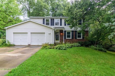 1188 Brookpoint Drive, Macedonia, OH 44056 - #: 4125294