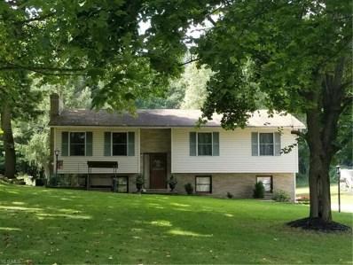 6670 Christman Road, Clinton, OH 44216 - #: 4125429