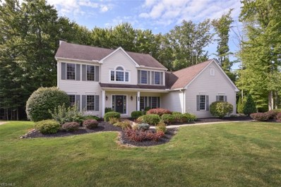 1544 Newton Pass, Broadview Heights, OH 44147 - #: 4125909