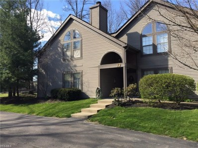 1183 Red Tail Hawk Court, Youngstown, OH 44512 - #: 4126014