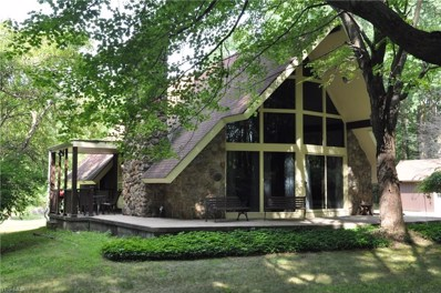 8240 Blue Heron Drive, Canfield, OH 44406 - #: 4126394