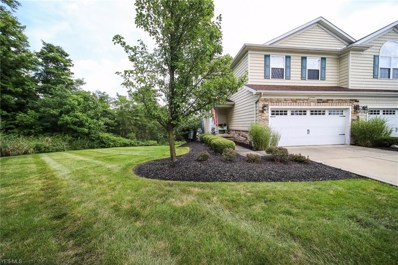 10968 Spear Road UNIT 1, Concord, OH 44077 - #: 4126937