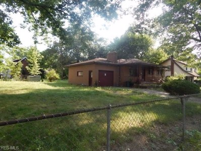 311 Ferndale Avenue, Youngstown, OH 44511 - #: 4127559